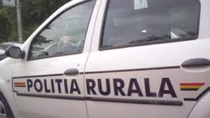 Politie-rurala